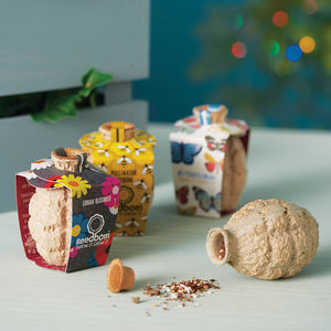 Birds, Bees And Butterflies Seedbom Gift Box - christmas catalogue