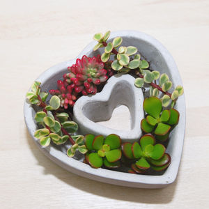 Concrete Heart Shaped Planter - gifts for her