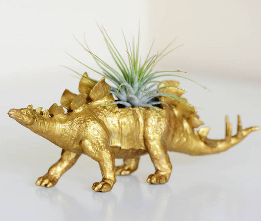 Stegosaurus Dinosaur Planter With Plant