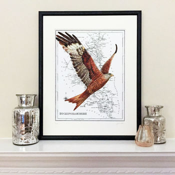 Red Kite On Map Of Buckinghamshire Print