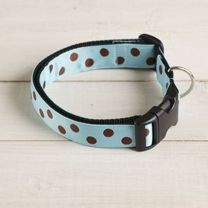 Domino Spotty Dog Collar - dogs