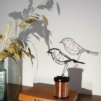 Digital Workshop And At Home Kit Create Wire Sculptures