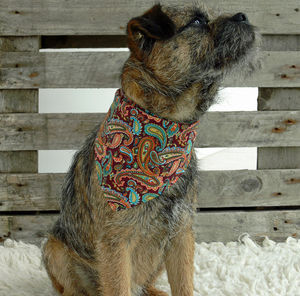 Rokabone Paisley Dog Bandana | Rust And Aqua - clothes