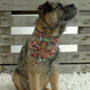 Rokabone Paisley Dog Bandana | Rust And Aqua