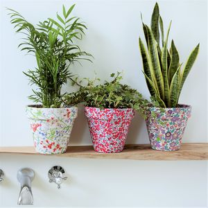 Liberty Print Fabric Covered Plant Pot - pots & planters