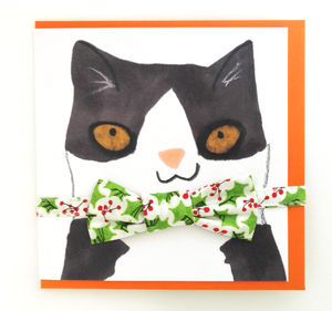Cat Collar And Bowtie Christmas Card Festive Gift Set - cats