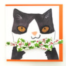 Cat Collar And Bowtie Christmas Card Festive Gift Set