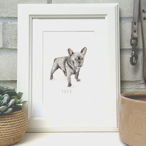 Personalised Pet Illustration - more