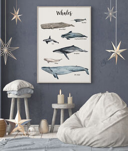 Whales Of The Oceans Illustrated Watercolour Art Print