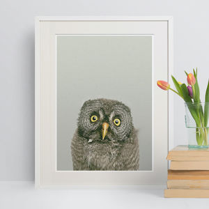 Woodland Nursery Baby Grey Owl Animal Print - nursery pictures & prints