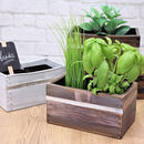 Grow Your Own Herbs Kit (Barnwood Front)