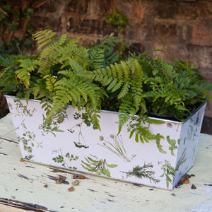 Botanical Herb Pattern Tin Trough Planter