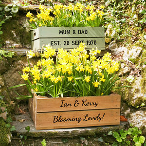 Personalised Medium Crate With Daffodil Bulbs - window boxes