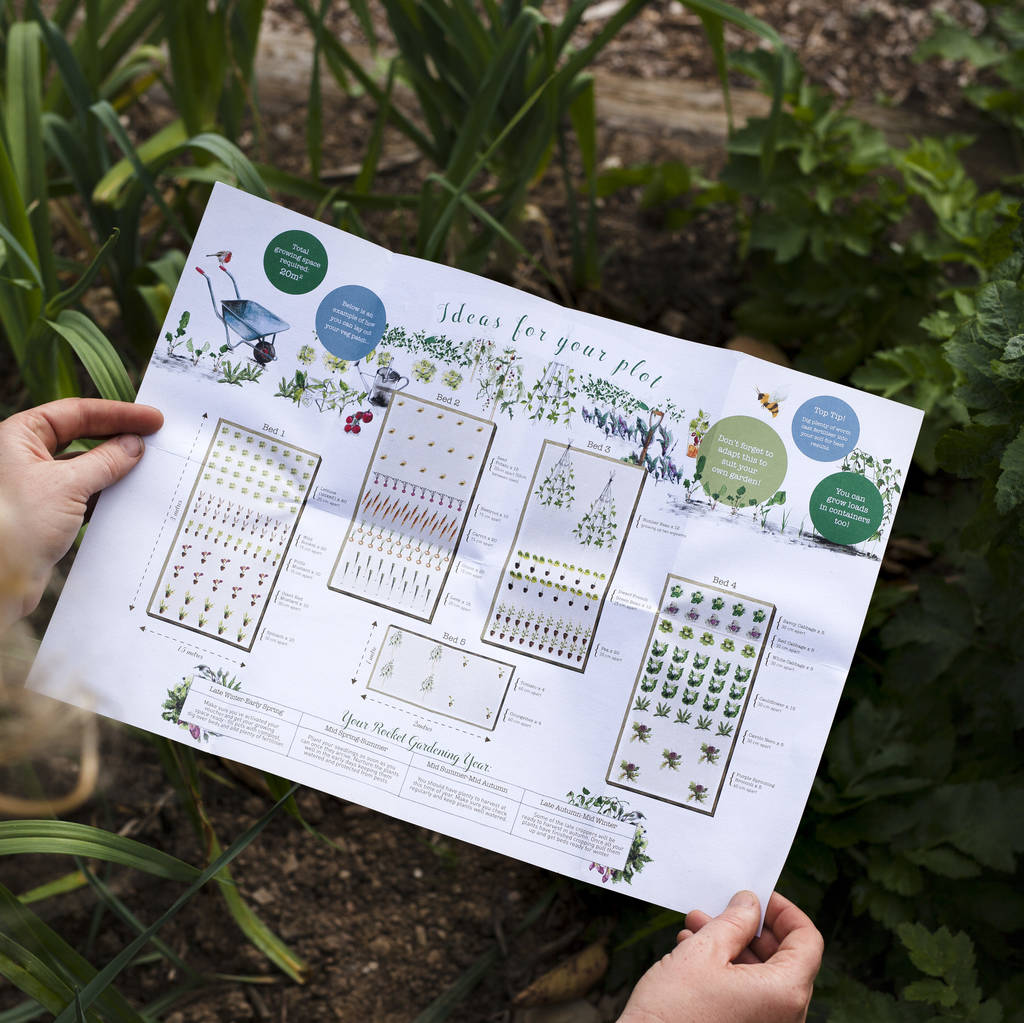 large vegetable patch experience gift voucher by rocket ...
