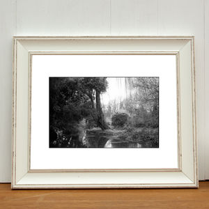Alder Carr, Suffolk Photographic Art Print - nature & landscape