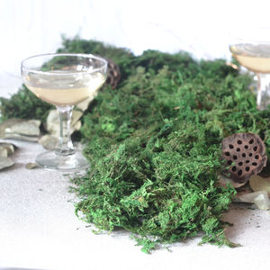 Preserved Green Moss - outdoor decorations