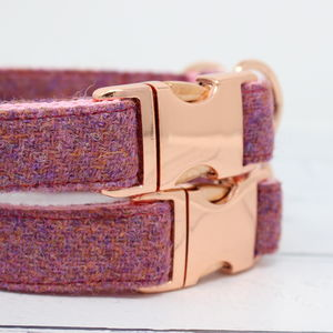 Isla Rose Gold Harris Tweed Dog Collar - dogs