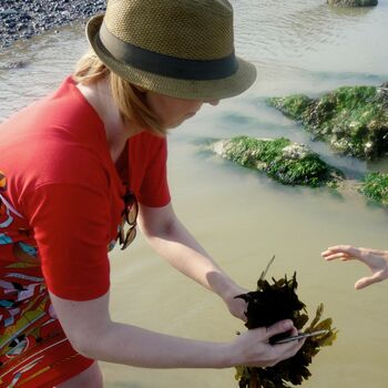 Vegan Coastal Foraging For One With Gourmet Feast