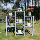 Polperro Wooden Plant Stand