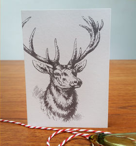 Christmas Reindeer Card - what's new