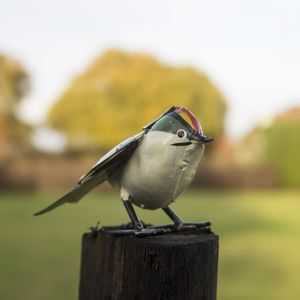 Goldcrest Handmade Recycled Metal Garden Ornament - sculptures & ornaments