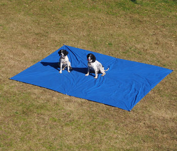Supersize Waterproof Xxl Picnic Mat
