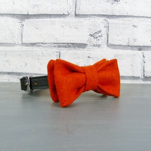 Burnt Orange Yorkshire Tweed Dog Bow Tie