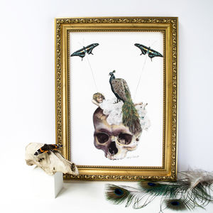 Peacock And Butterfly Gothic Skull Print