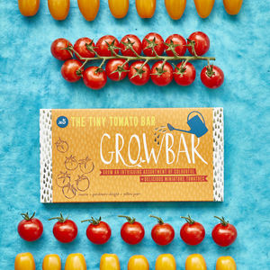Tiny Tomato Growbar - new in garden