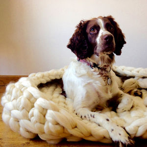 Diy Luxury Crochet Kit Dog Bed