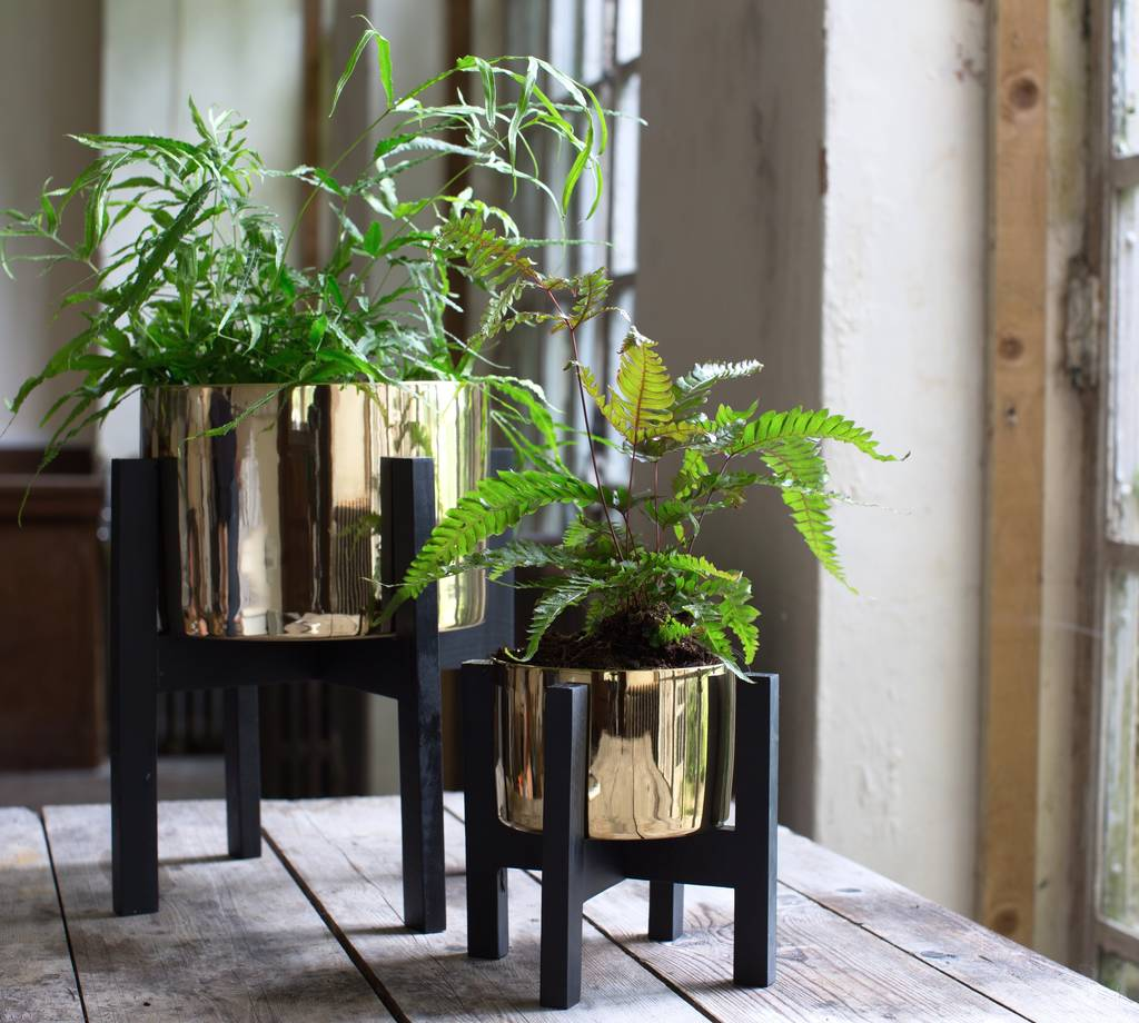 Garden Bush: Gold Planter On A Stand By The Forest & Co