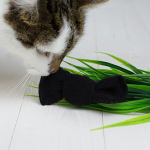 Handcrafted Organic Catnip Bow Tie Toy - top for cats