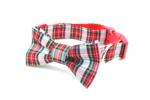 Tartan Collar With Bowtie And Optional Name - clothes