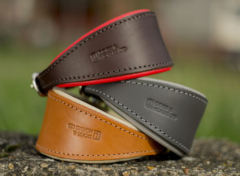 Luxury Padded Leather Hound Collar