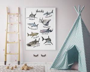 Sharks Of The Oceans Illustrated Watercolour Art Print
