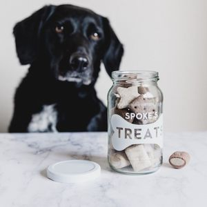 Personalised Pet Treats Storage Jar - dogs
