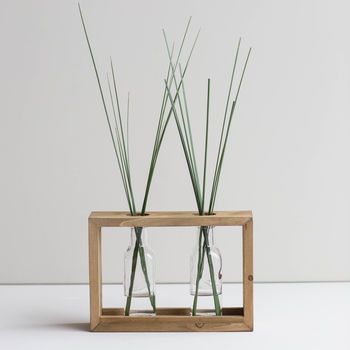 Double Framed Stem Vase
