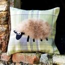 'Pretty' sheep on tartan fabric