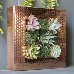 Copper Planting Frame