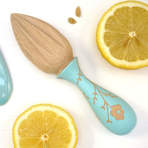 Wooden Hand Painted Lemon Juicer - kitchen accessories