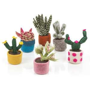 Handmade Felt Cactus Collection - home accessories