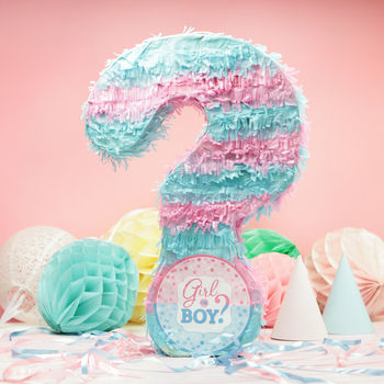 Baby Shower Gender Reveal Party Pinata