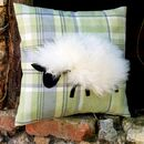 White sheep on tartan fabric