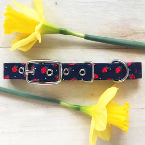 Strawberry Dog Collar - dog collars