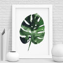 Monstera Plant Print Watercolour Leaf Illustration