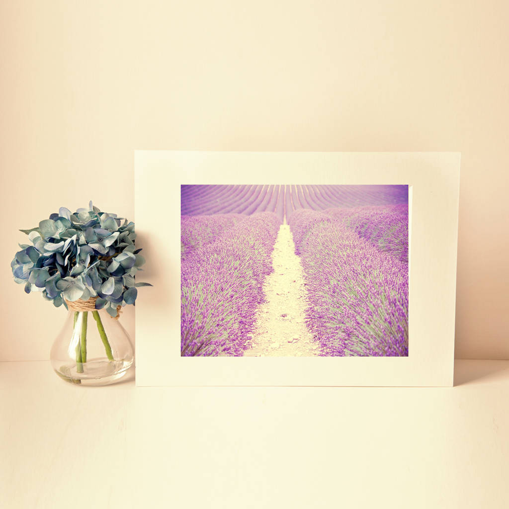 Buy provence lavender field fine art photography print for Buy fine art photography
