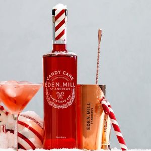 Candy Cane Christmas Gin - gifts for husband or boyfriend