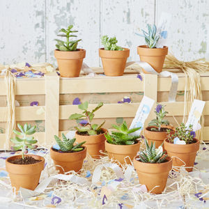 Personalised Succulents Wedding Favours - natural artisan wedding trend