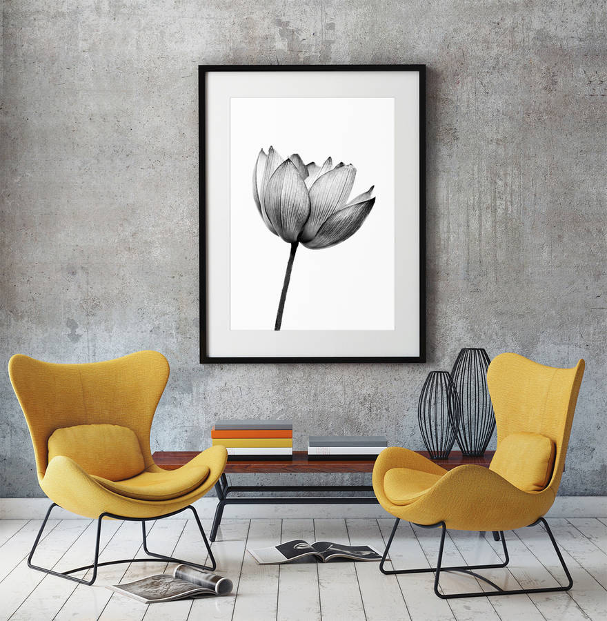 black and white plant print by over & over | notonthehighstreet.com