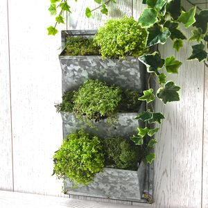 Filing Rack Wall Planter